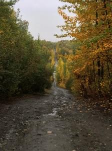 Alaska 2015 073