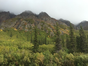 Alaska 2015 085